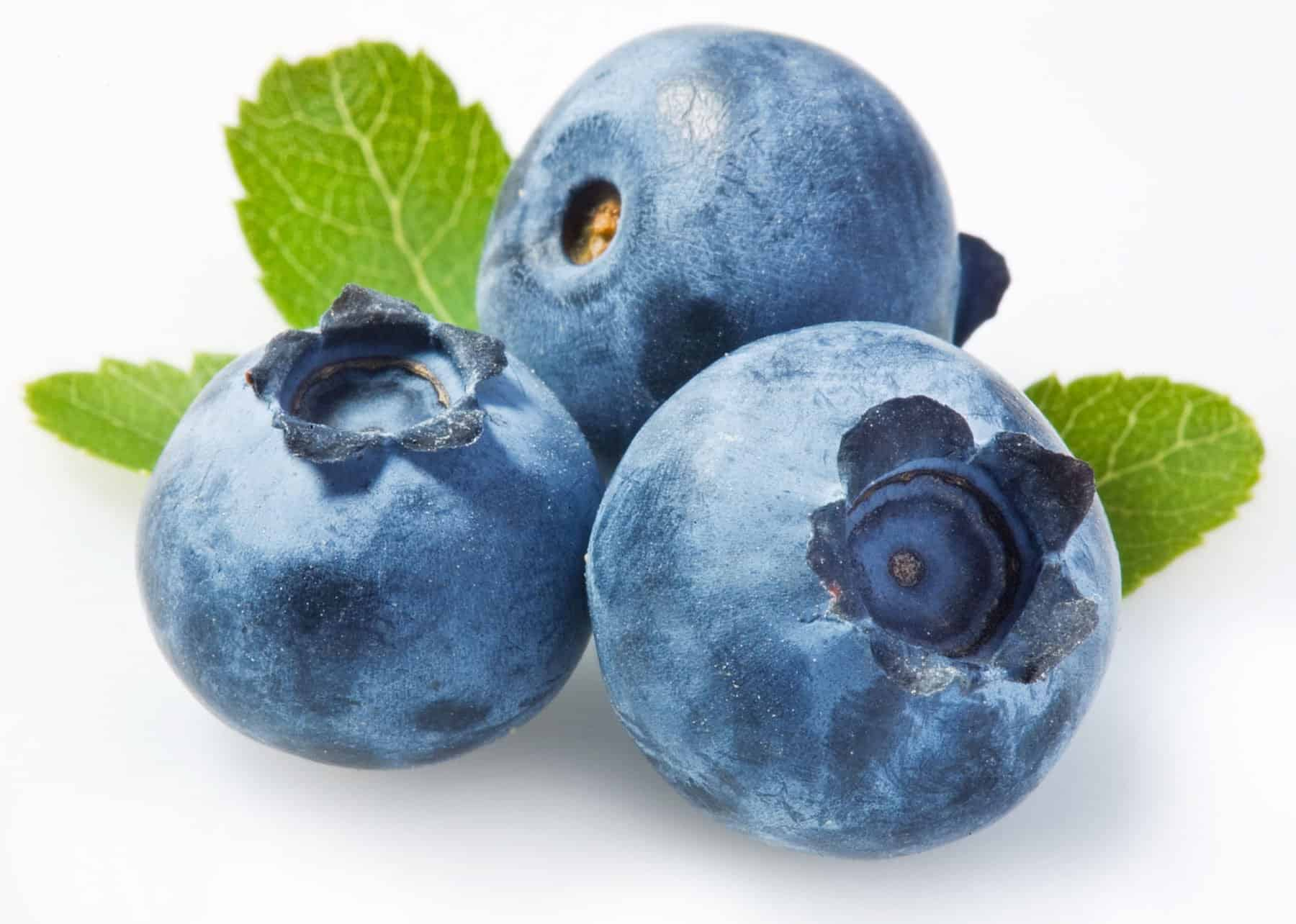 Blueberry - super food
